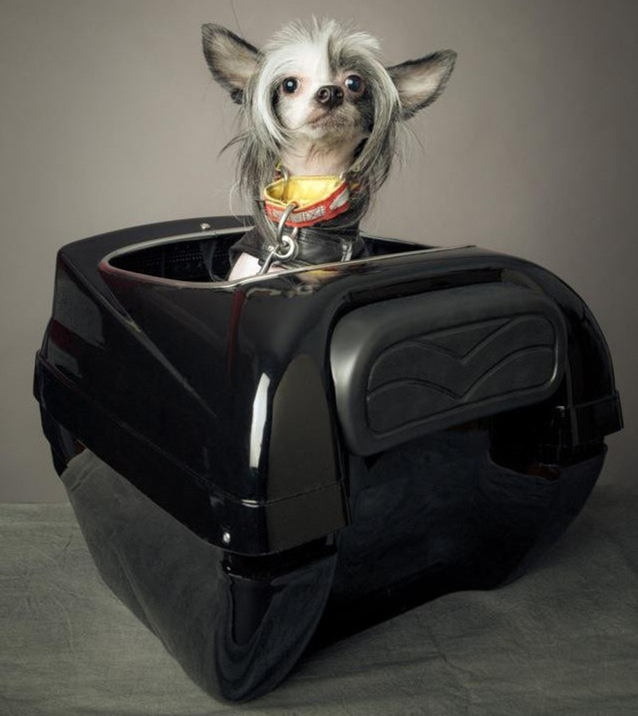 Motorcycle Pet Carrier