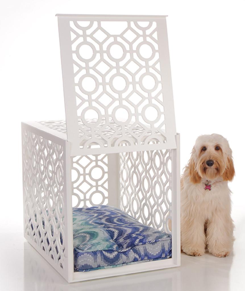 Designer Dog Crate