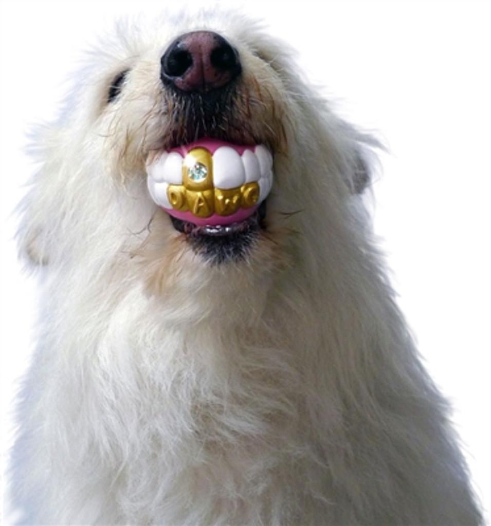bling dawg gold teeth dog toy ball