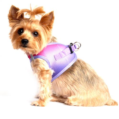 Choke Free Ombre Mesh Dog Harness - Raspberry Sundae