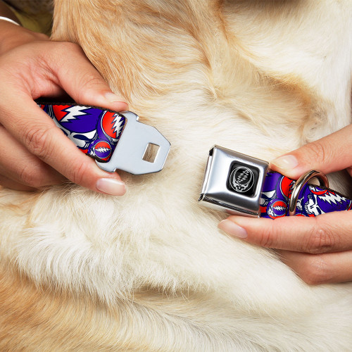 red white blue steal your face dog collar