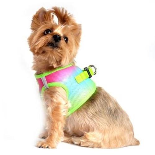 Choke Free Ombre Mesh Dog Harness - Rainbow