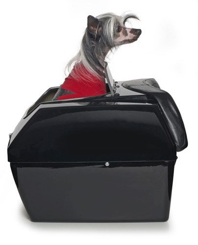Large Motorcycle Dog Carrier