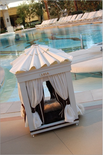 Royal Cabana Dog Bed