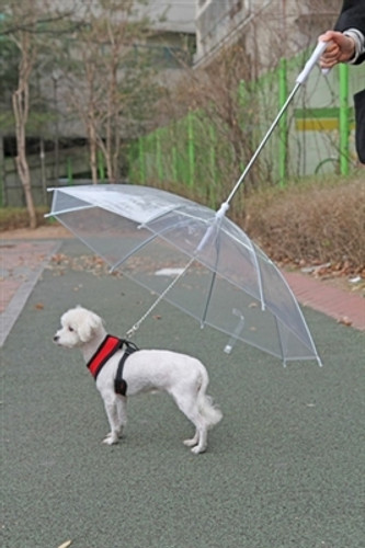 Umbrella Dog Leash