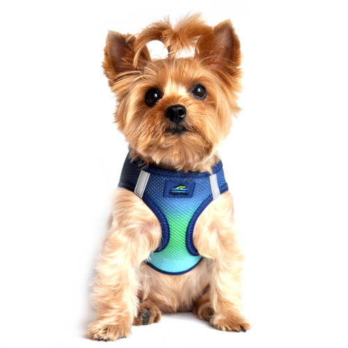 Choke Free Ombre Mesh Dog Harness - Northern Lights