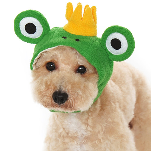prince frog dog hat