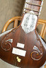 Classic Sitar With Padded Gig Bag - Dark