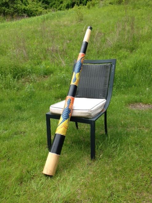 Blue Dot Gecko Teakwood Didgeridoo