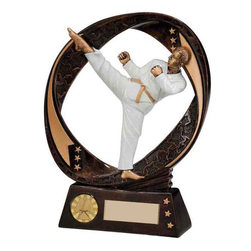 Typhoon karate martial arts high kick award