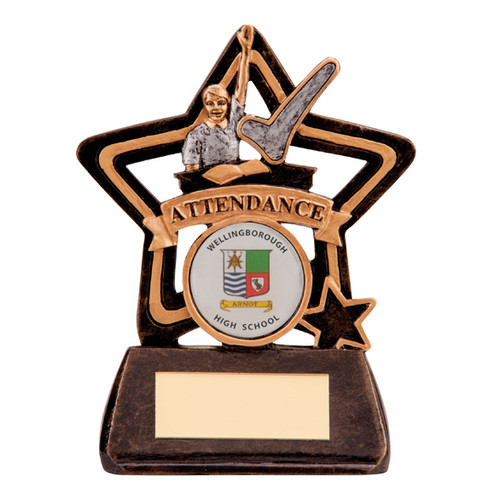 Little Star Attendance Award school college budget cheap trophy