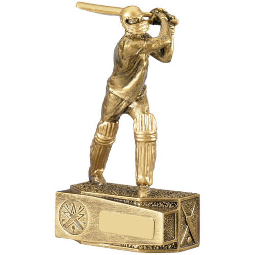 Cricket gold swinging batsman award fabulous detailed trophy from 1st Place 4 Trophies