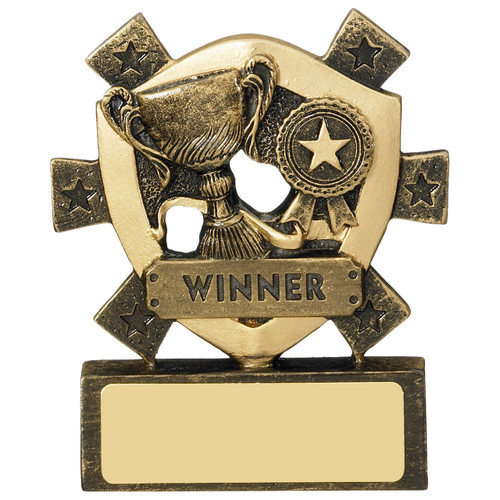 WINNER budget CHEAP mini star shield award with FREE engraving
