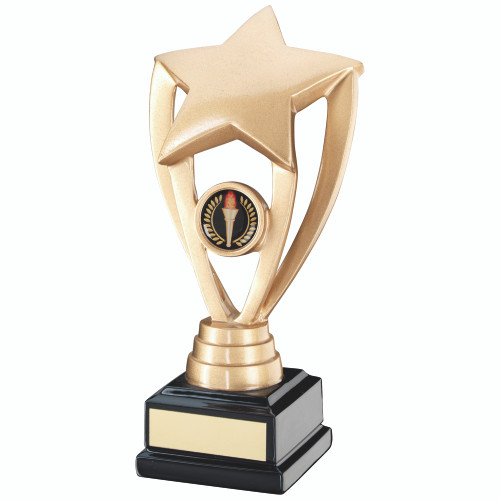 Solid gold resin multi activity star. This trophy includes FREE personalised engraving.